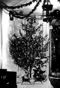 Old Christmas Tree with Lights